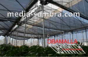 La media sombra puede ser utilizada para reforzar un invernadero regular para convertirlo en un invernadero capaz de resistir el sol